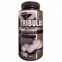 Tribulus 90% Large Caps 100 kaps. - Vision Nutrition