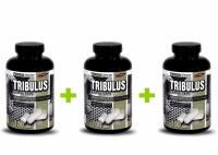 Tribulus 90% Large Caps 3x100 kaps. - Vision Nutrition