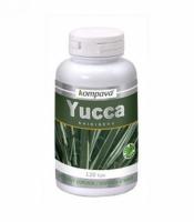 Yucca 120kps. - Kompava